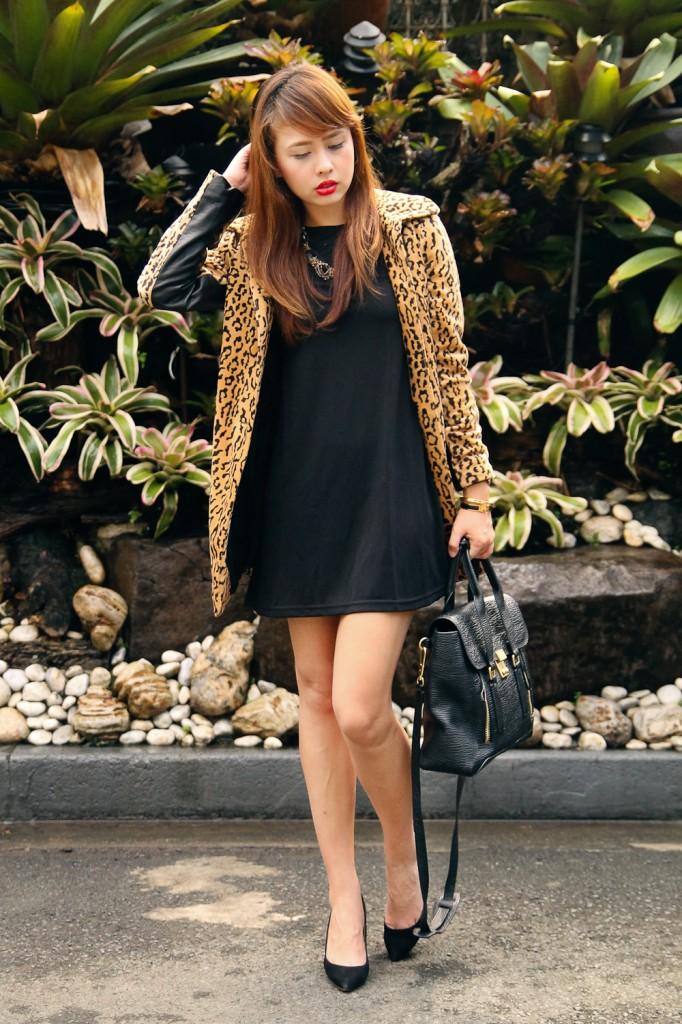 domztiu-leopard9